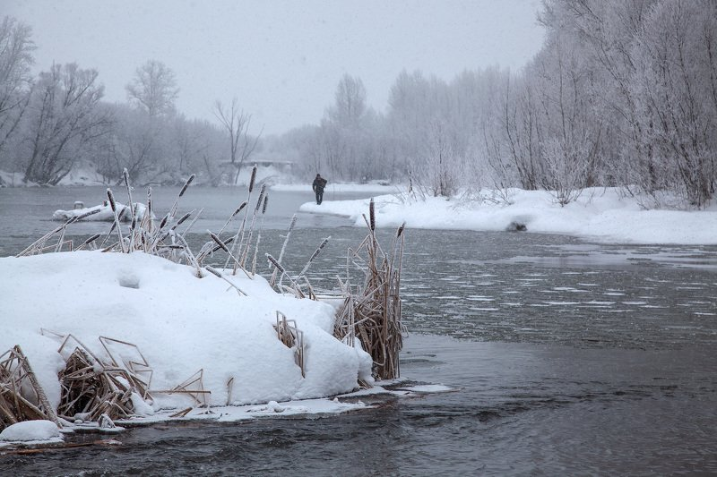 пейзаж,река,зимаснег,снегопад,рогоз Зимний день 3photo preview