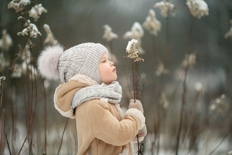 снег кустик девочка ребенок зима ***photo preview