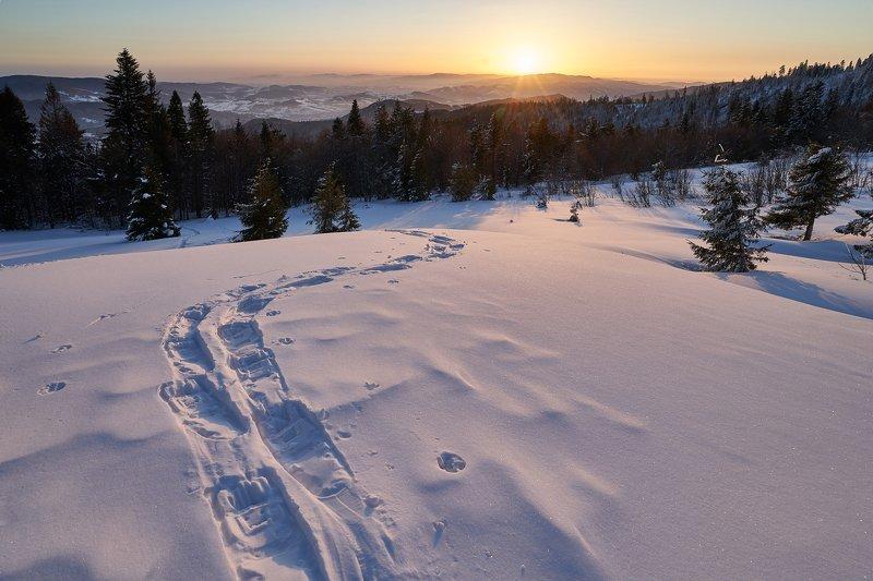 mist,mountains,hut,sunrise,tree,cold,frozen,snow M2photo preview
