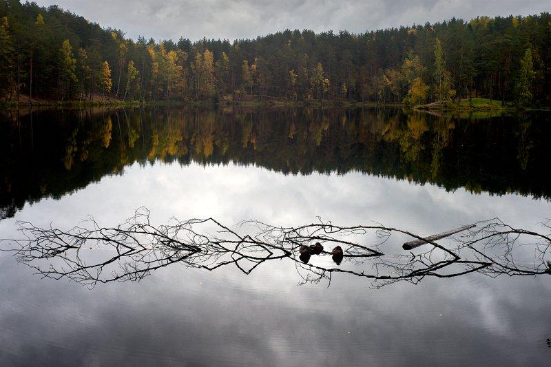 семиозерье, озеро, осень, утки photo preview