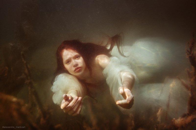 mermaid. under the water mermaidphoto preview