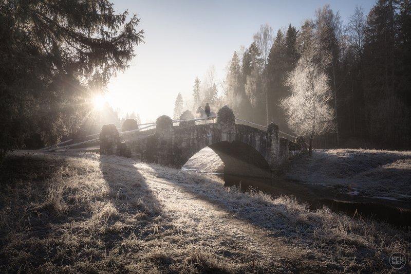 павловск, заморозки, зима Первые заморозки в Павловскеphoto preview