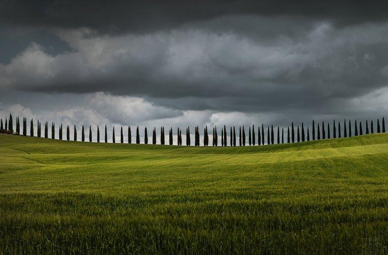 italia, nature, travel, tuscany, italy Tuscanyphoto preview