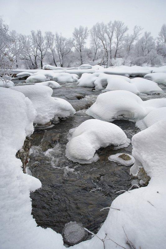 пейзаж,зима,дерево,иней снег,сугроб,река,мороз Зимний день 5photo preview