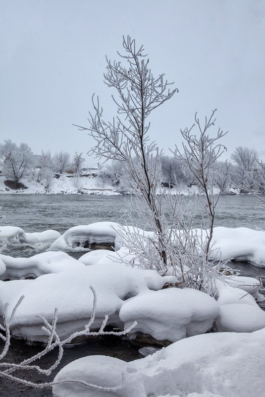 пейзаж,зима,дерево,иней снег,сугроб,река,мороз Зимний день 6photo preview