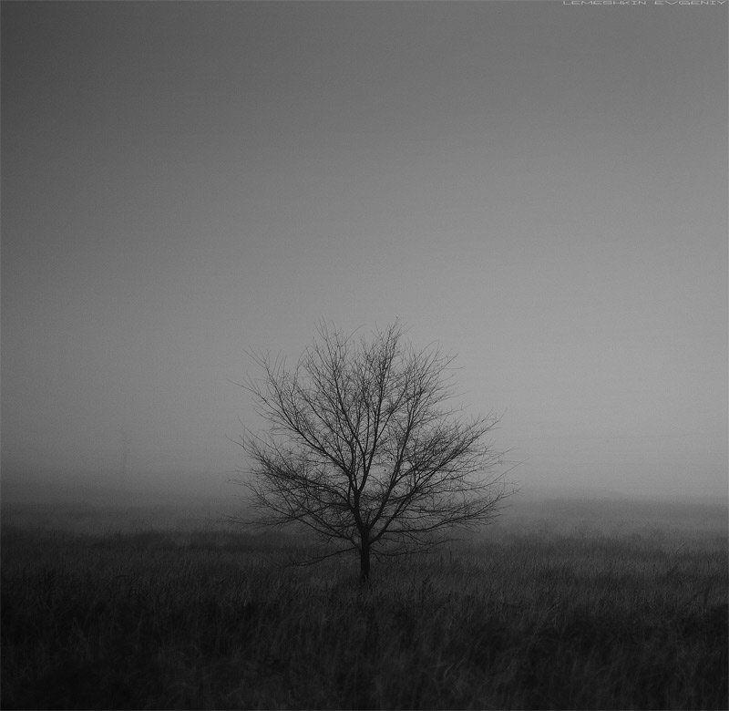 Одиночество...photo preview