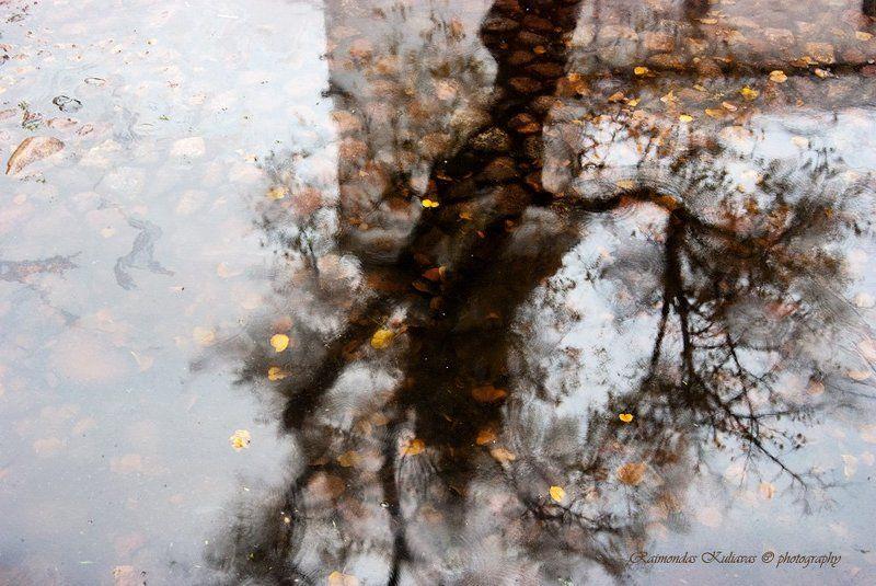 tallinn, autmn, rain, reflection Autumn in Tallinnphoto preview