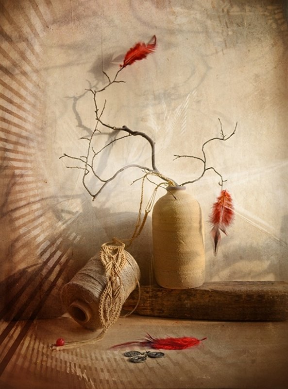 Натюрморт ветви перья история любовь свет Перо Жар-Птицыphoto preview