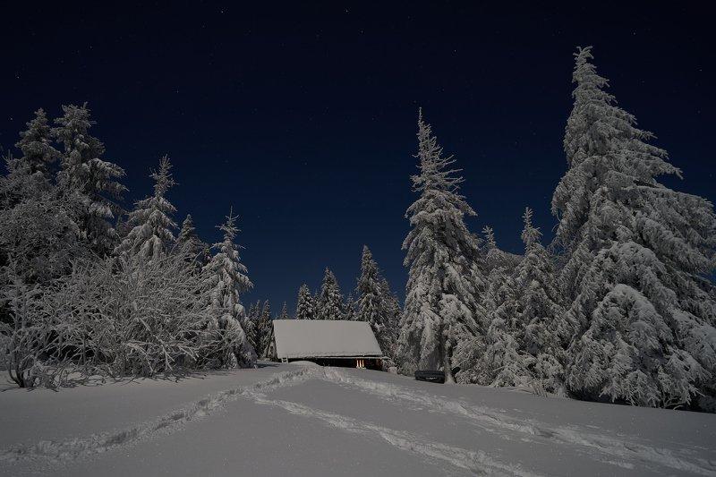 mist,mountains,hut,sunrise,tree,cold,frozen,snow Hut3photo preview
