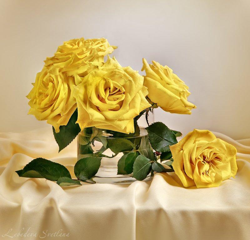 розы,жёлтые розы,натюрморт,ваза, Натюрморт с жёлтыми розамиphoto preview