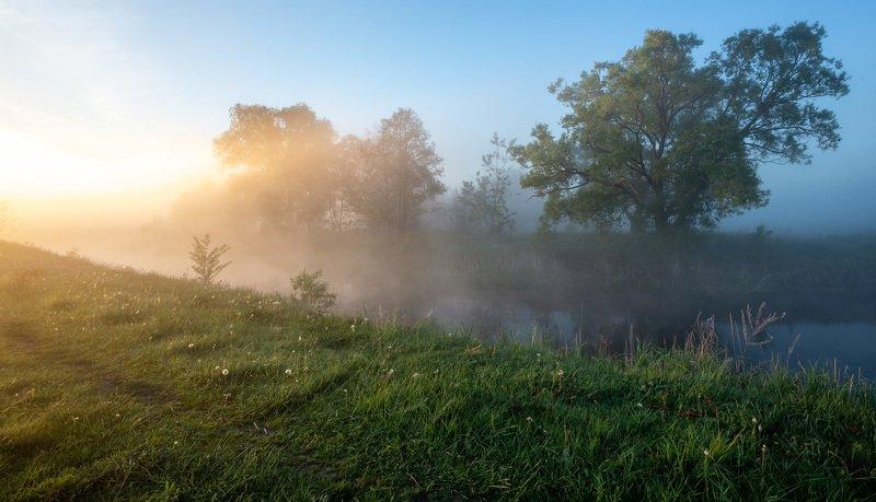 Свет утреннего маяphoto preview