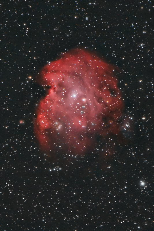 astrophotography Sh2-252 - Monkey Head Nebulaphoto preview