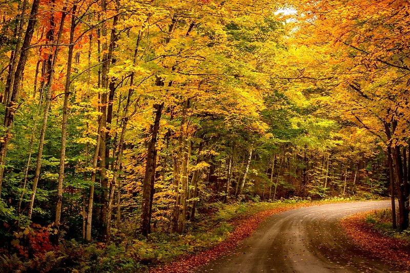 Осенний поворот...photo preview