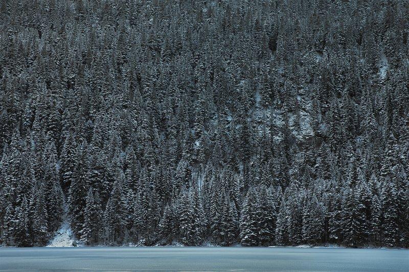 черногория, природа, путешествие, пейзаж Зима в Дурмитореphoto preview
