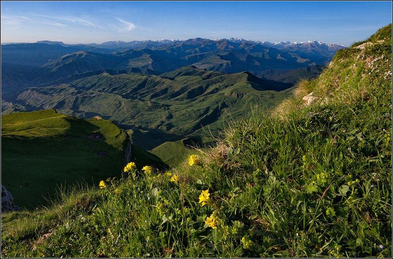 дагестан, горы, цветы В горах Дагестанаphoto preview