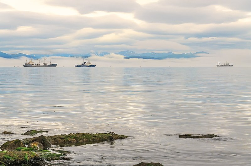 авачинская бухта камчатка Будни Авачинской бухтыphoto preview