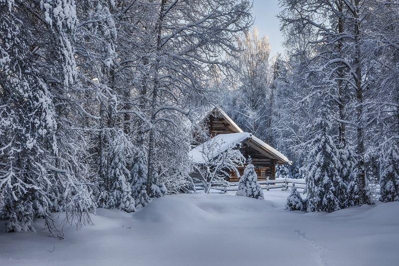 зима снег иней лес деревья елки сосны избушка изгородь сугробы следы В застывшем лесуphoto preview
