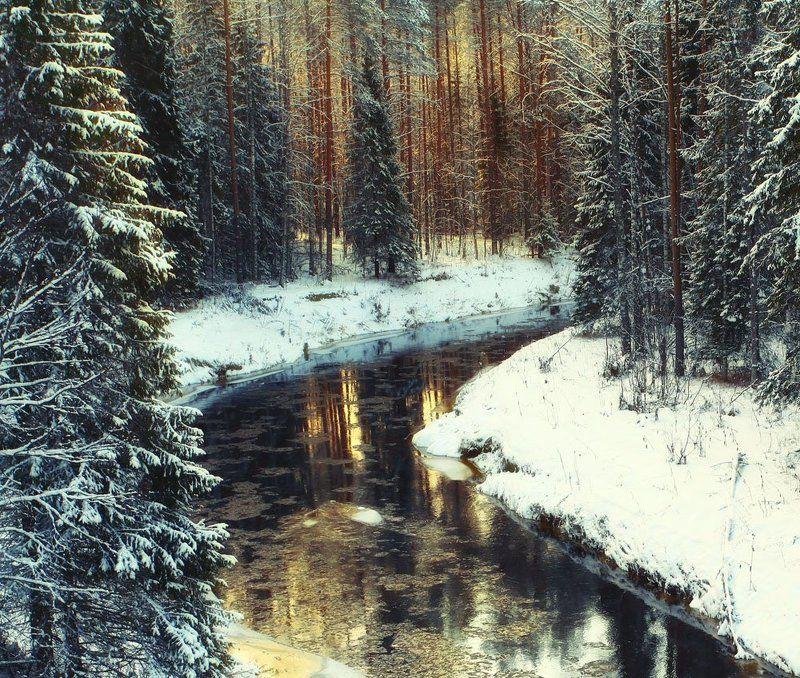 по дороге к Деду Морозу, В.Устюгphoto preview