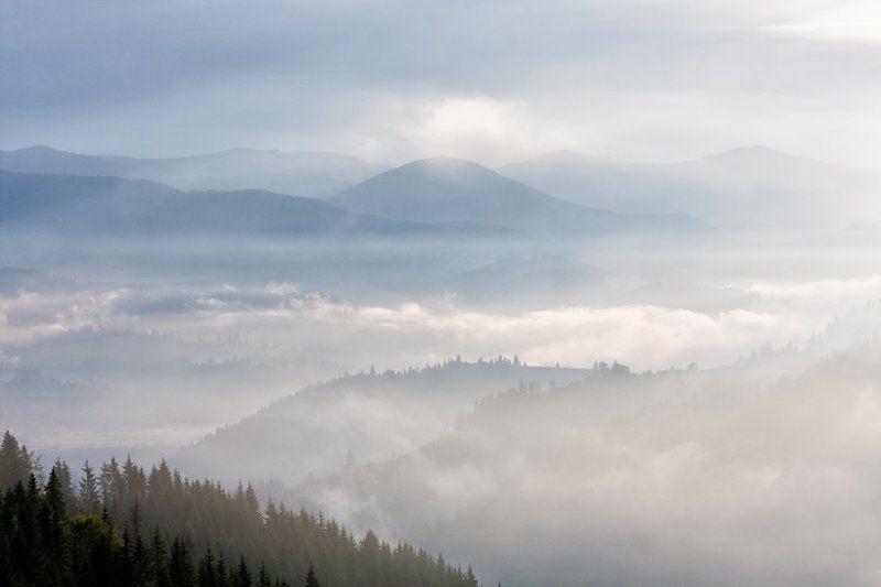 Карпаты. Туман...photo preview