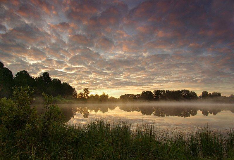 рассвет, утро, свет, вода, озеро, облака, лето Утро летнееphoto preview