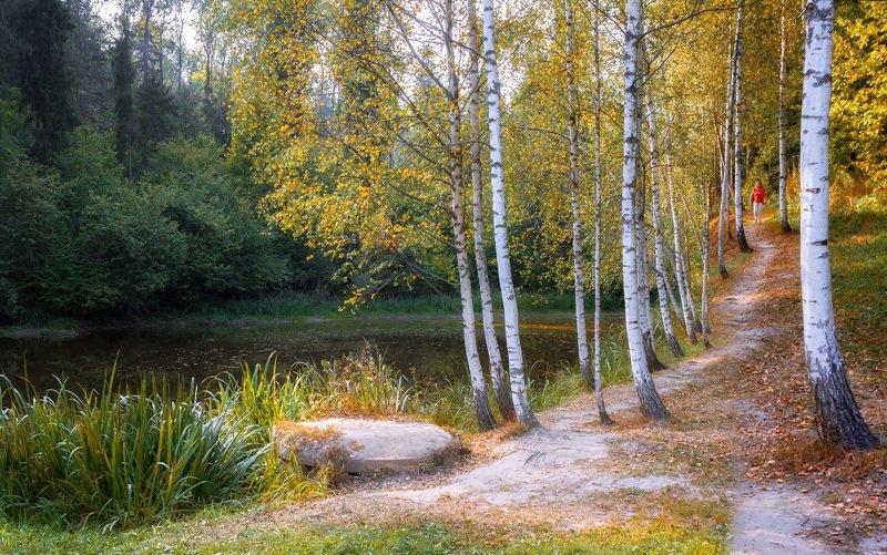 пруд, осень, лес, тропа, девушка По осенней тропинкеphoto preview