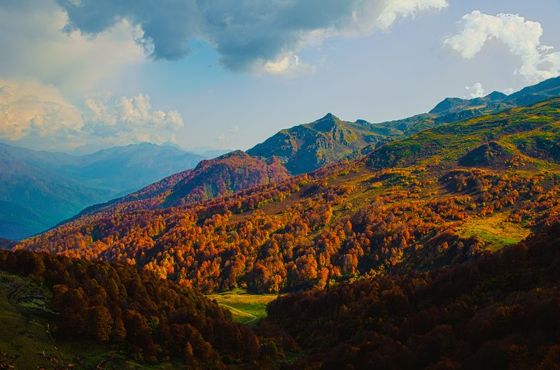 абхазия, горы, туман, альпийский луг Альпийские луга Абхазииphoto preview