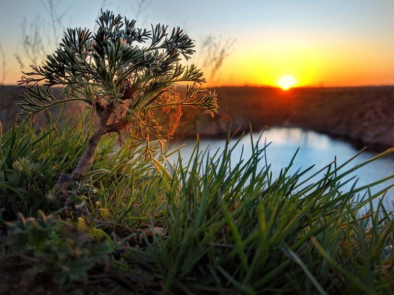 закат,весна,пейзаж,краски,зелень,солнце,небо,река,рекаднепр,landscape,сюжет,природа,nature,sky ***photo preview