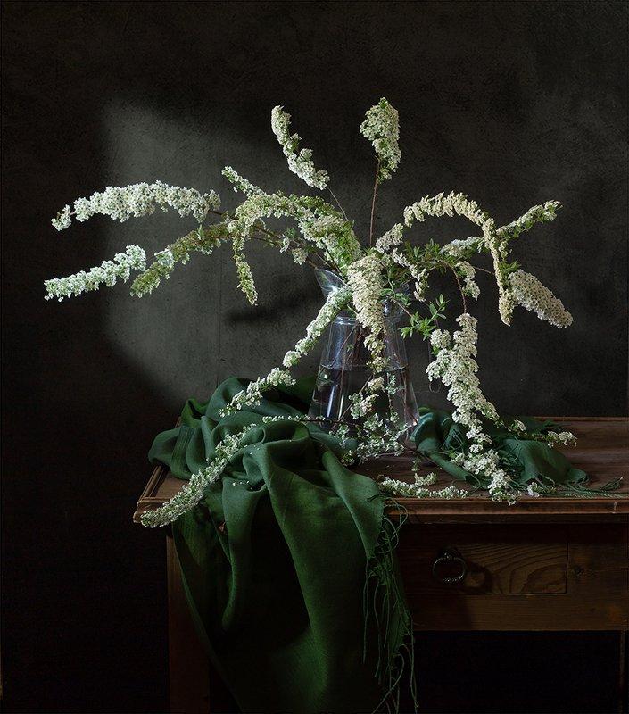 натюрморт, цветы Зацвела спиреяphoto preview