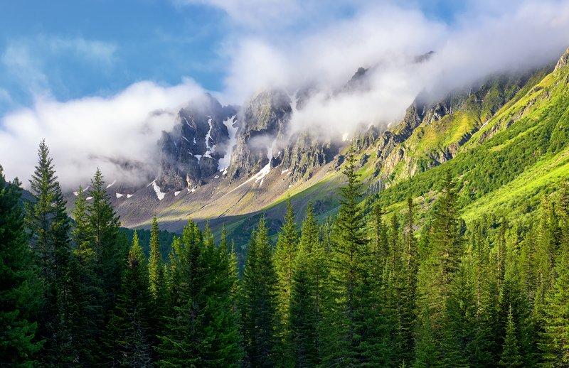 Утренний туман на горных пикахphoto preview