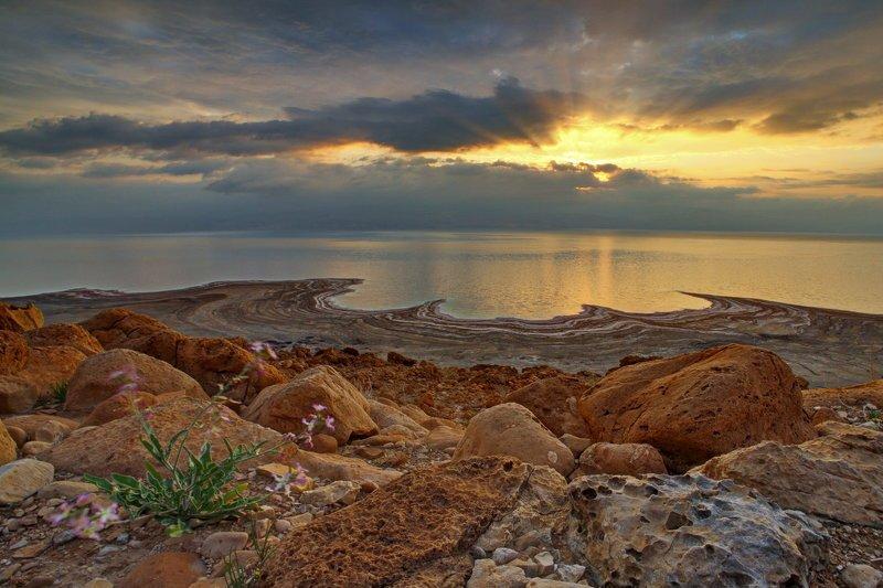 мертвое, море, небо, пейзаж, соль, dead sea, рассвет, yām ha-melaḥ Позолотилоphoto preview
