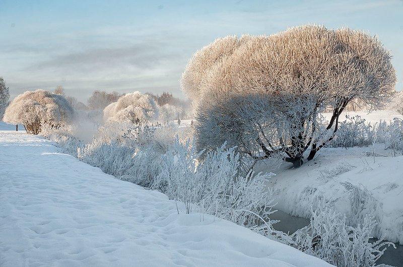 Снежная зима.photo preview