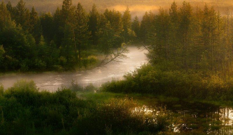 #амунахта, #тында, #амурскаяоблать, #туман Вечерний туман ползет по рекеphoto preview