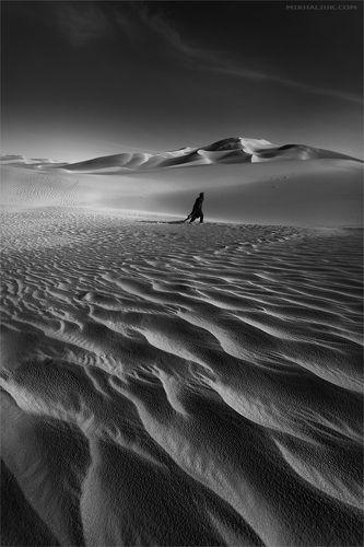 Sahara,