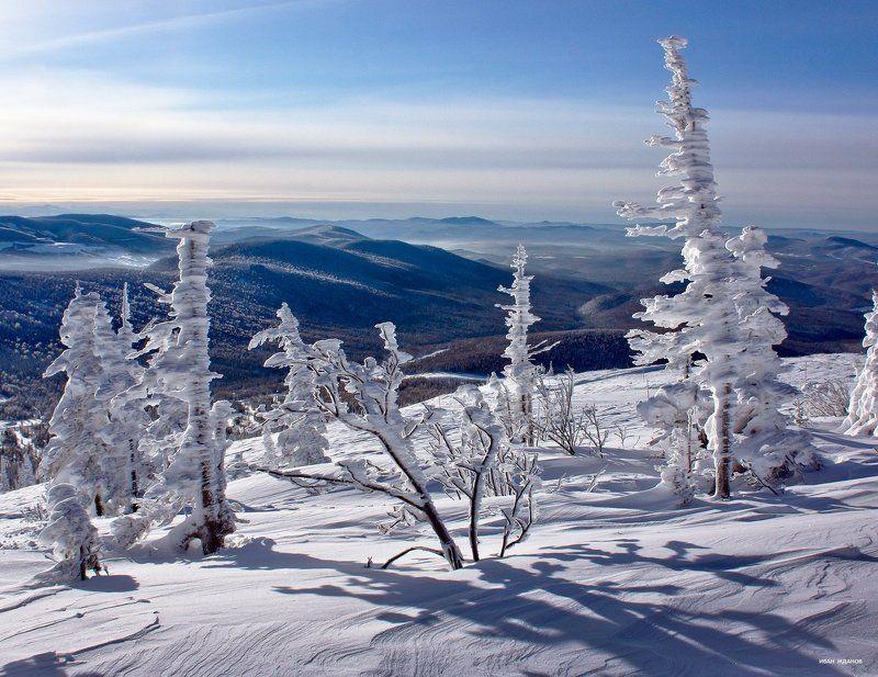 горы, шерегеш, горная шория, зима, сибирь Ёлки-палкиphoto preview
