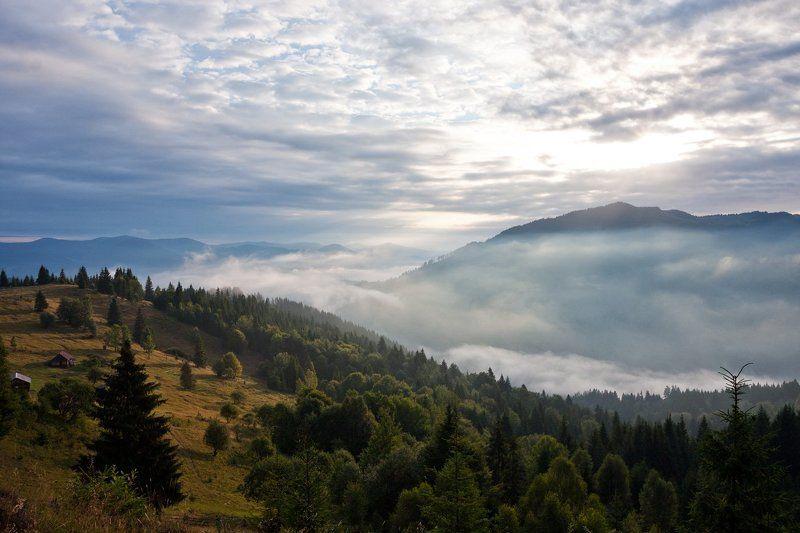 Разгоняя туманphoto preview