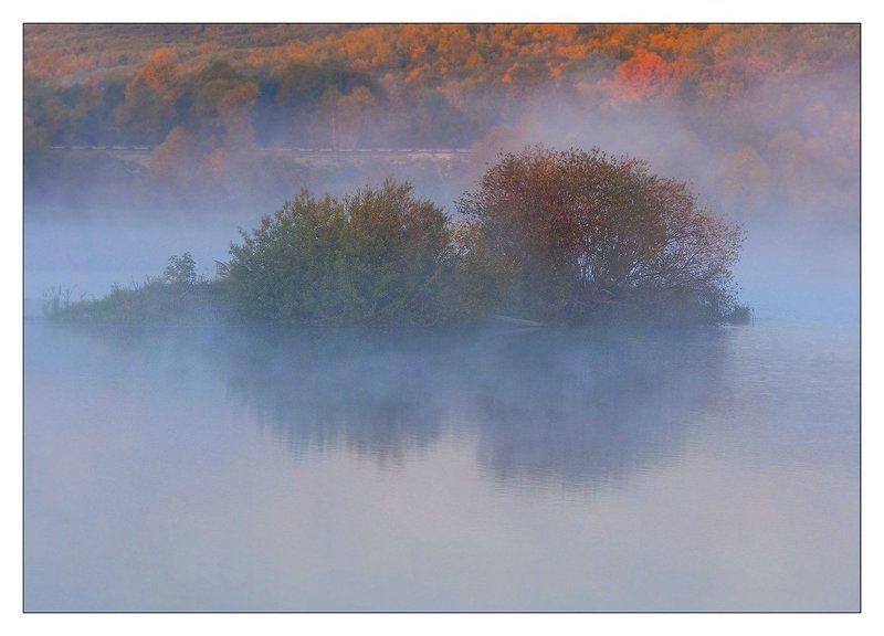 Два Йожика на утреннем променаде....photo preview