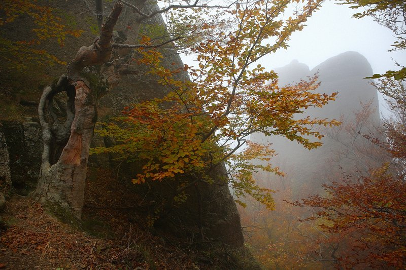 крым, горы, осень, демерджи Демерджи в октябреphoto preview