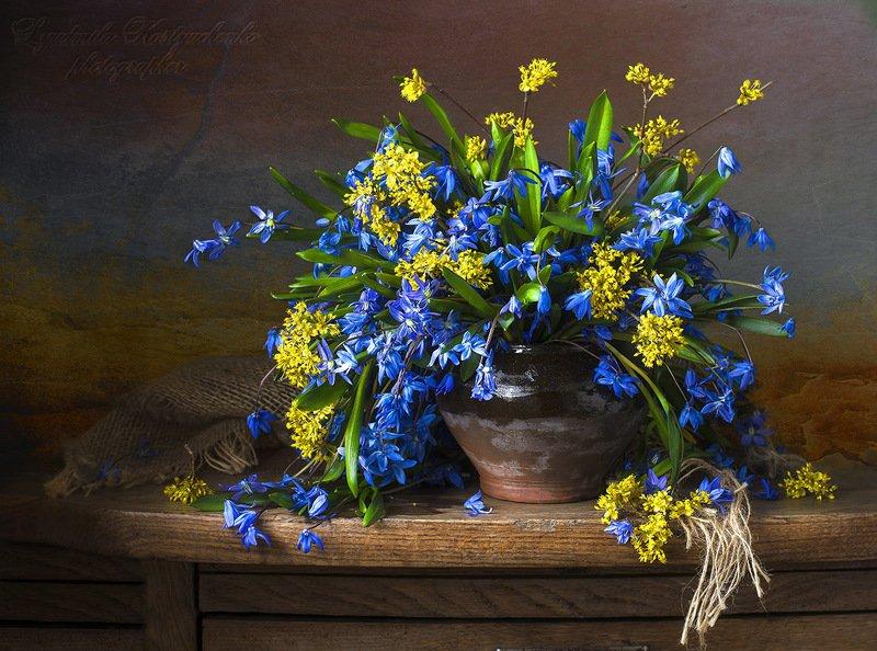натюрморт с с пролесками,весна,букет,голубые,синие цветы,художественное фото,искусство. photo preview