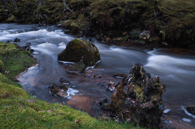 река камни вода пейзаж трава мох  Каменное лицоphoto preview