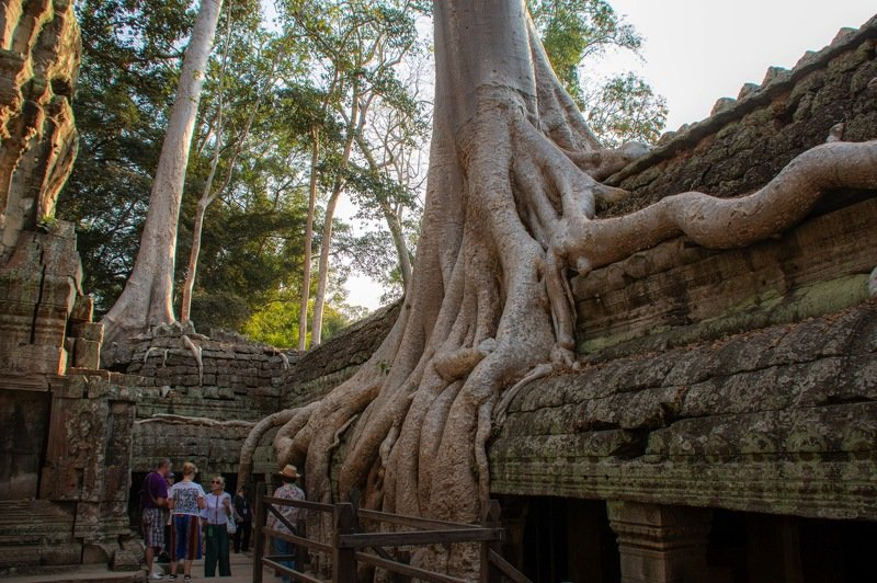 Ta Prohm templephoto preview