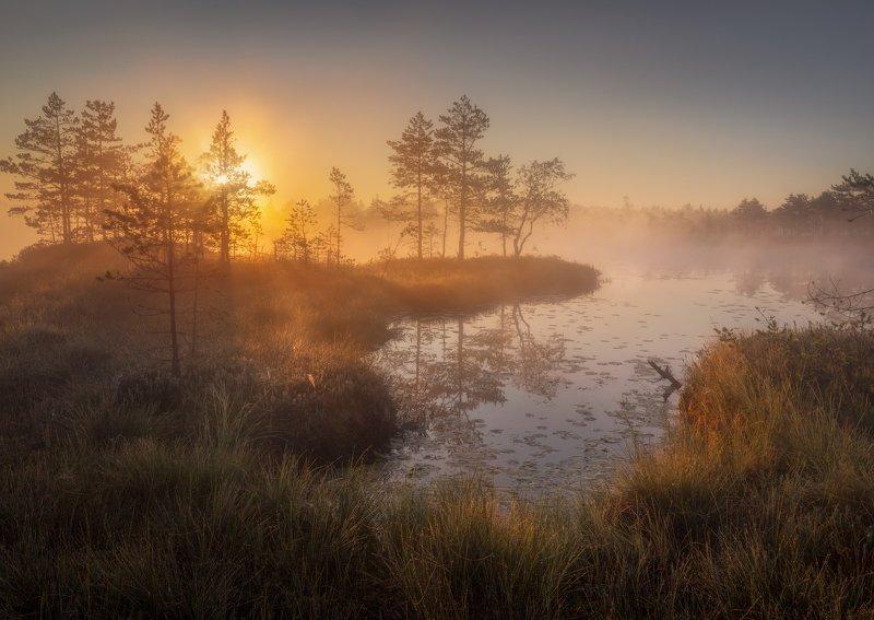 болото, озеро затейливое \