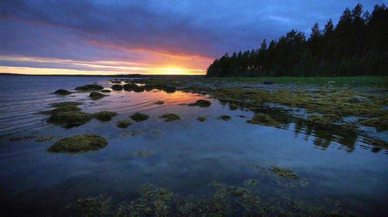 кольский, закат, вода, белые ночи Белое море на закатеphoto preview