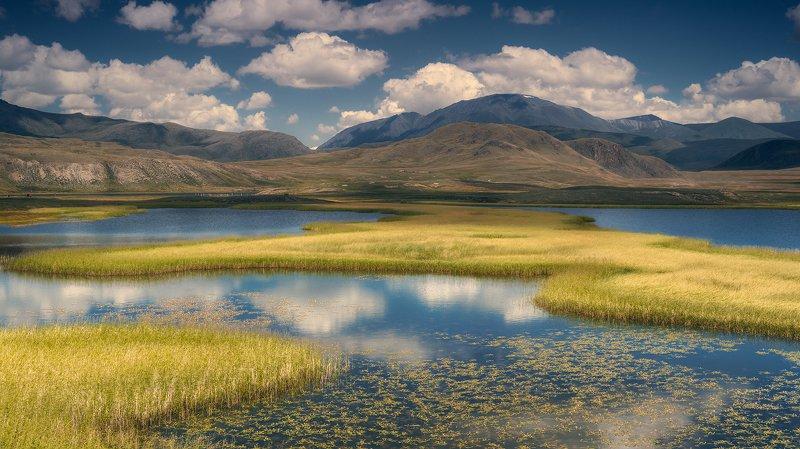 пейзаж, панорама, горы, озеро, алтай, сибирь, природа, путешествия, буйлюкем, ряска, трава, небо, облака, отражения, панорама, путешествия, большой, красивая Озёра Буйлюкемаphoto preview