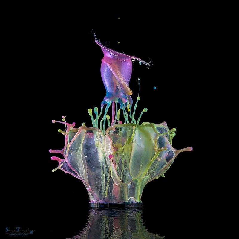 вода, капли, жидкость, макро, арт, liquid, liquidart, splash, drop, Лепесткиphoto preview