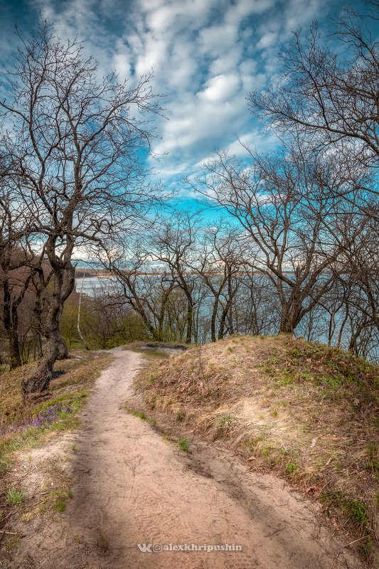spring sunset landscape trail path sky clouds Along a path with cloudsphoto preview