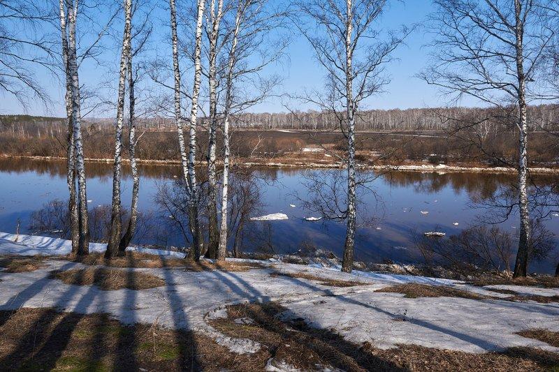 Весенний воздух чист и прозраченphoto preview
