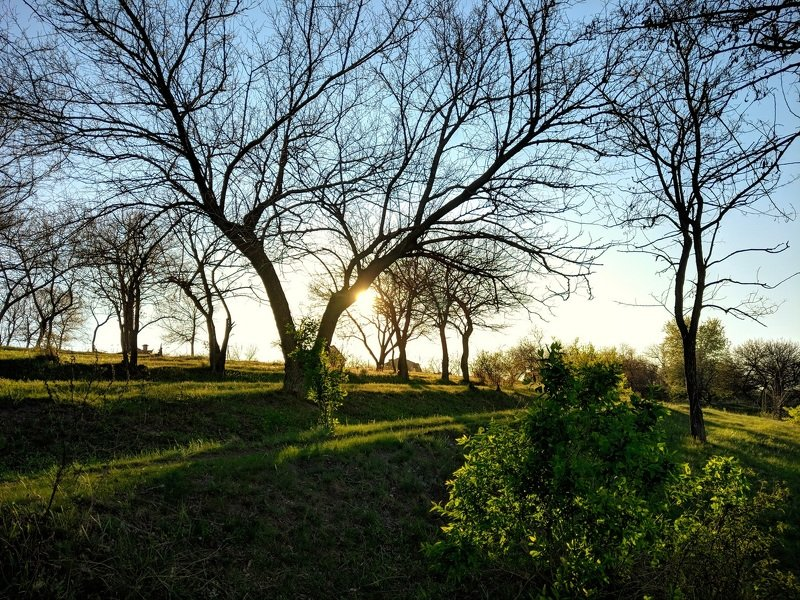 апрель,вечер,пейзаж,весна,закат,цвет,зелень,landscape,вид,солнце,небо,дерево, Апрель.Вечереет...photo preview