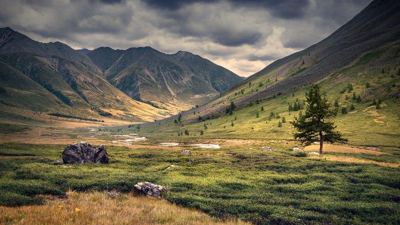 пейзаж, природа, ущелье, горы,  река, тара, дара, южно, чуйский, хребет, алтай, сибирь, поход, путешествие,  большой, высокий, облака, далекий Ущелье реки Тараphoto preview