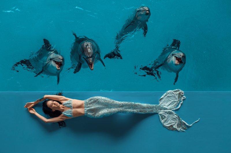 Дельфин и русалкаphoto preview