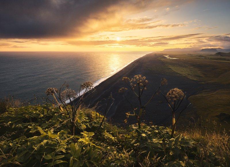 #landscape #seascape #nature #sea #iceland #sunset \